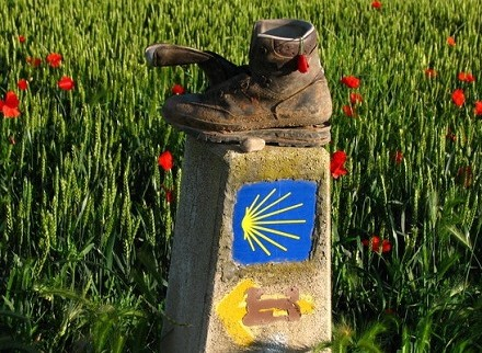 Camino de Santiago Guided Bike Tour